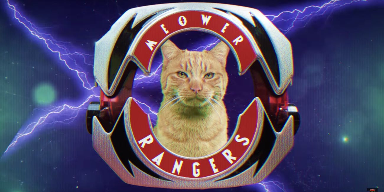 Power Rangers Cats