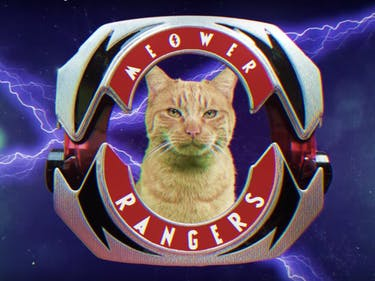 Silly 'Meower Rangers' YouTube Parody Is Close to Canon