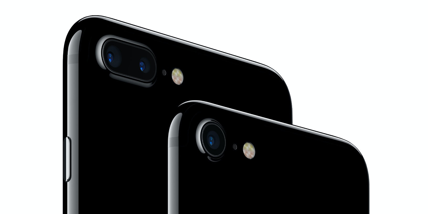 The iPhone 7 Plus in back, and the iPhone 7 in front.