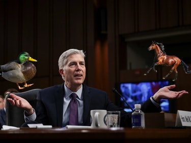 A Senator Just Asked Gorsuch the Dumbest Reddit AMA Question