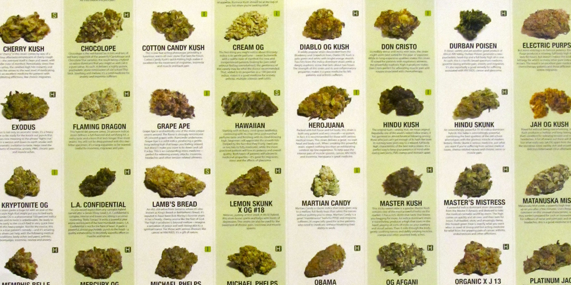 Weed Strain Names Don't Indicate Any Genetic Differences ...