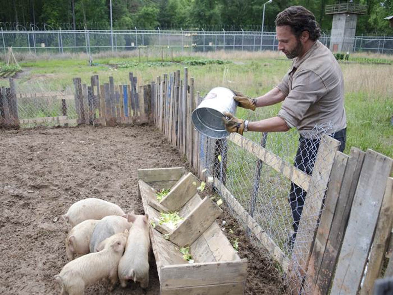 Remember when Rick just effing loved pigs on 'The Walking Dead'?