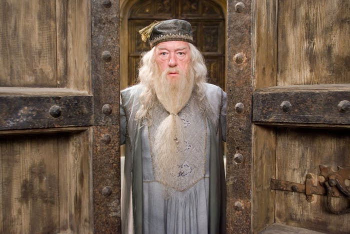Dumbledore, seen here opening the doors of the closet he's trapped in, probably.