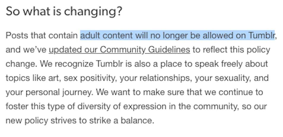 tumblr porn ban