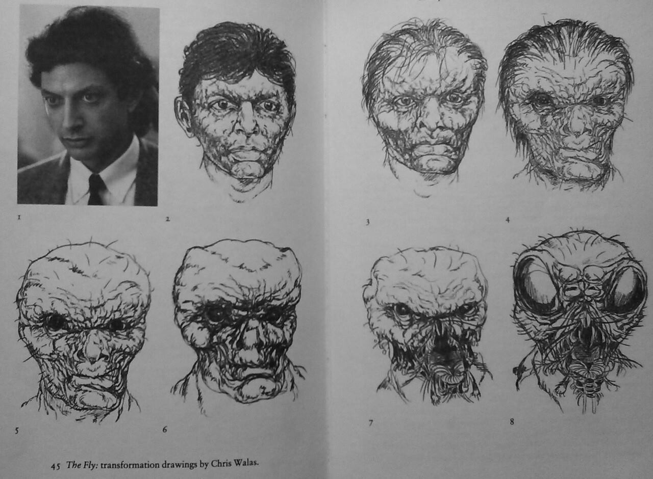Original concept art from 'The Fly'