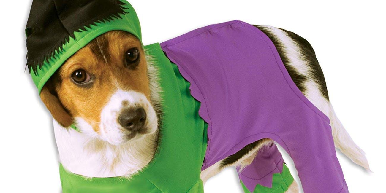 Marvel Universe The Hulk Pet Costume