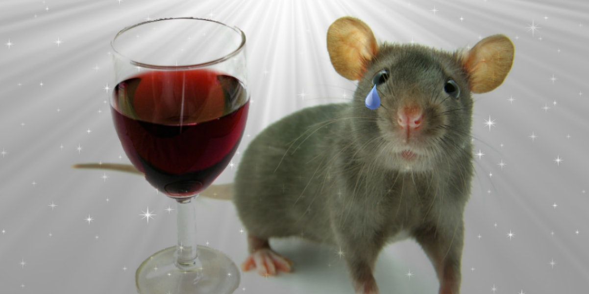 Fearful emotion memories are not alleviated by alcohol.