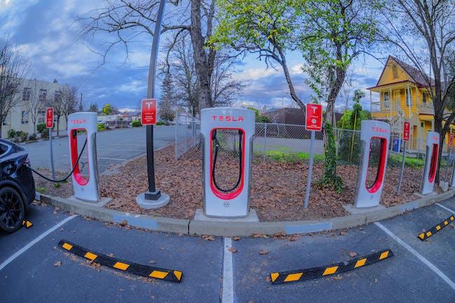 Tesla Feeders, Ukiah, California