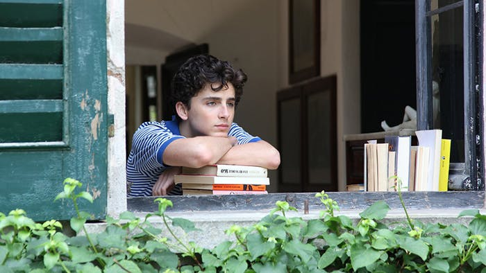Elio Perlman (Timothée Chalamet) plays a restless 17-year-old boy on the brink of adulthood in 'Call Me by Your Name'.
