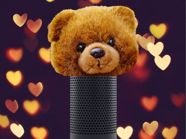 Alexa Is America's Favorite Teddy Bear for Adults