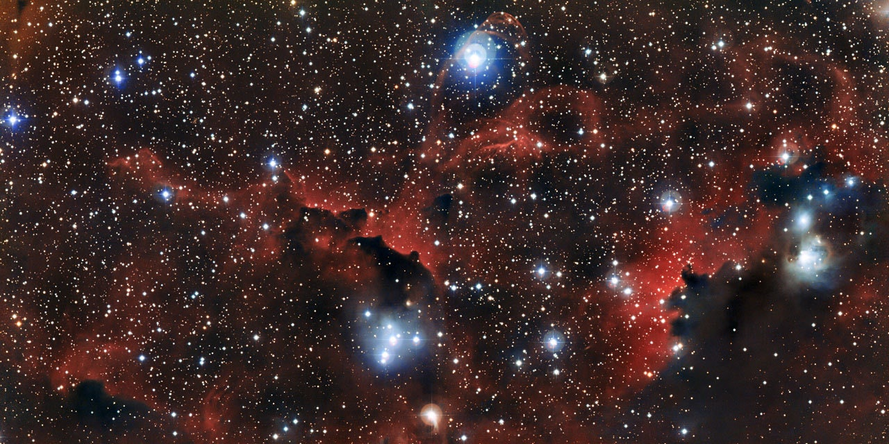This image shows the intricate structure of part of the Seagull Nebula, known more formally as IC 2177. These wisps of gas and dust are known as Sharpless 2-296 (officially Sh 2-296) and form part of the wingsâ of the celestial bird. This region of the sky is a fascinating muddle of intriguing astronomical objects â a mix of dark and glowing red clouds, weaving amongst bright stars. This new view was captured by the Wide Field Imager on the MPG/ESO 2.2-metre telescope at ESOâs La Silla Observatory in Chile.