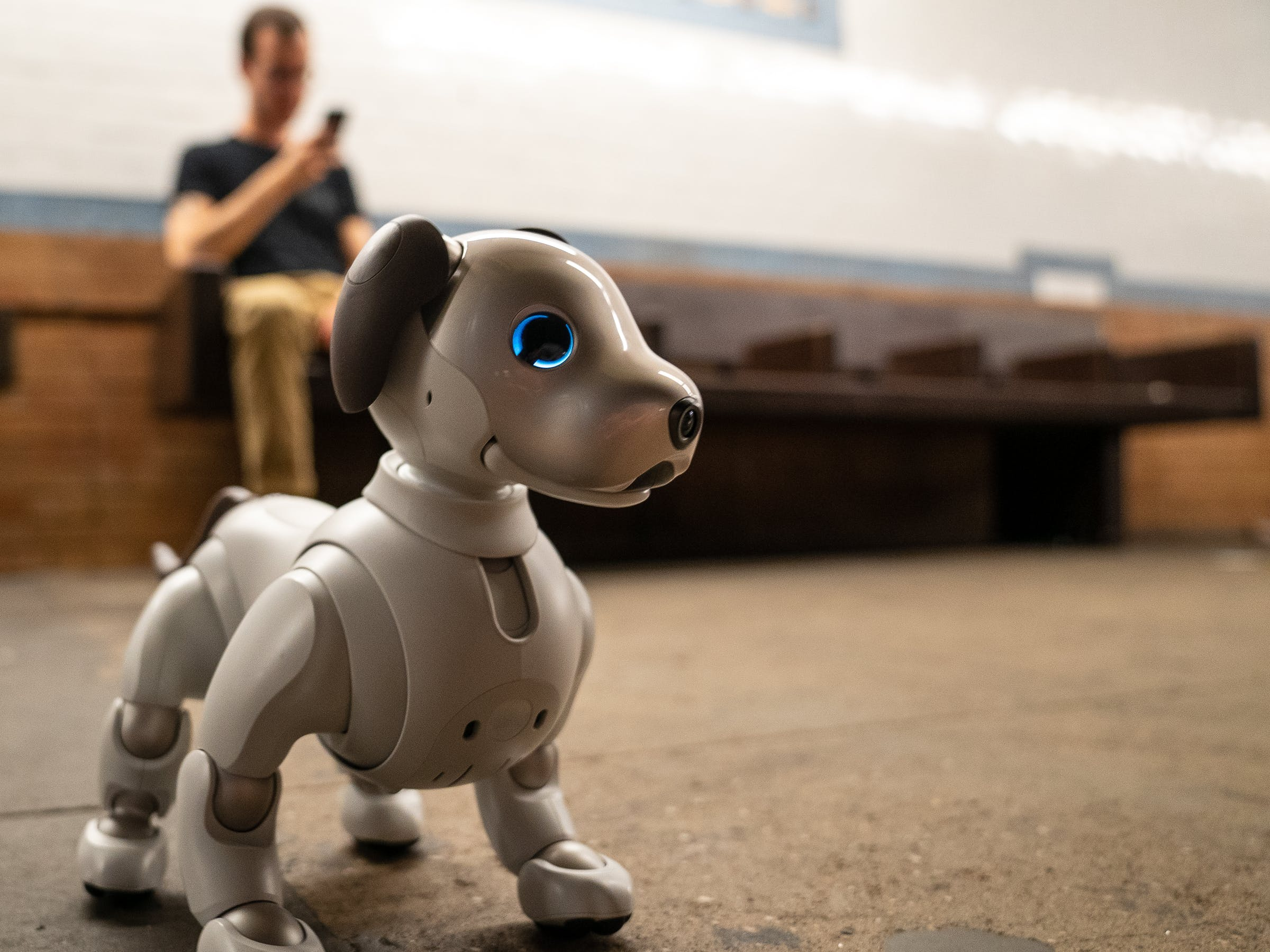 Sony Aibo: I Babysat a Robot Dog for a Week to Feel Less