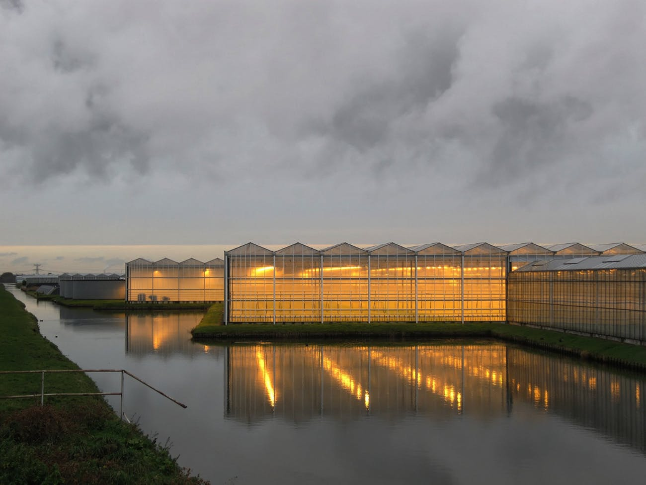 Netherlands greenhouses.