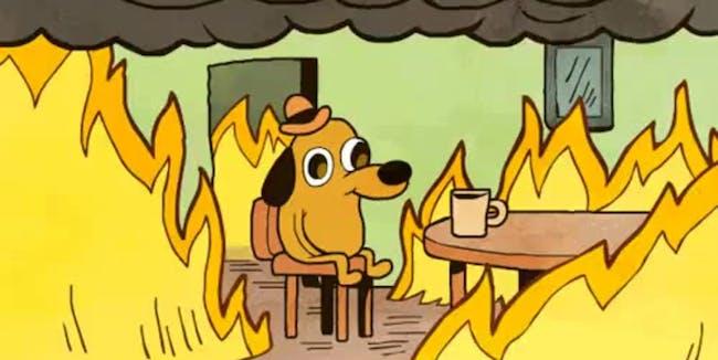 meme, dog, fire