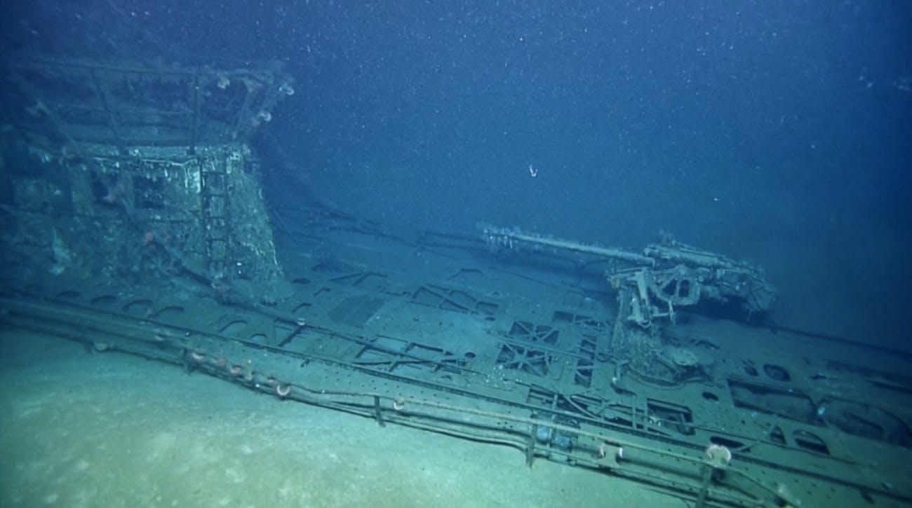 nazi submarine bacteria