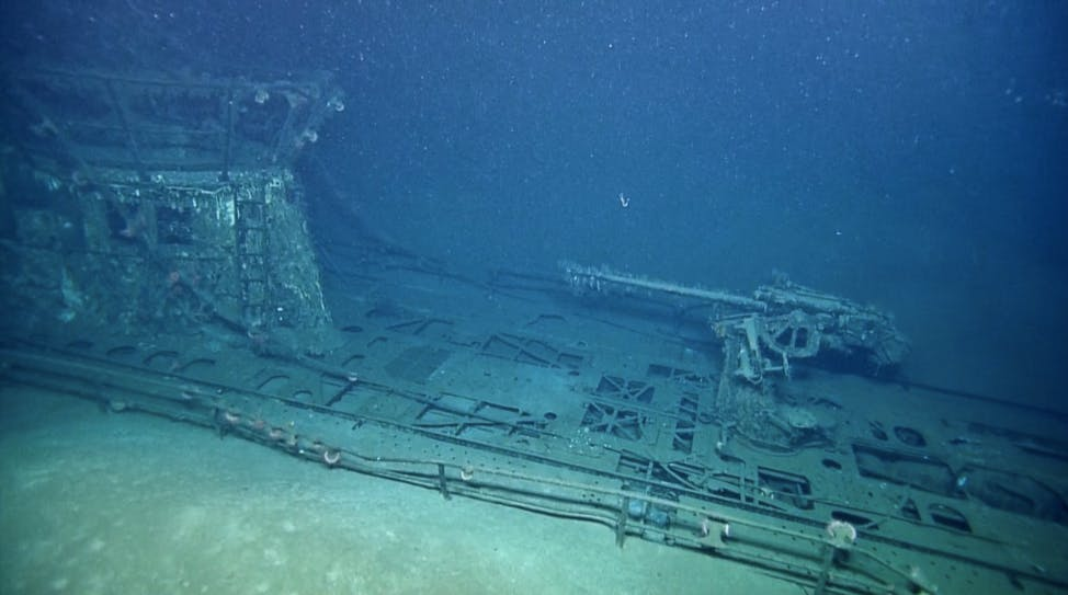 A Nazi Submarine Is Being Consumed by Inhabitants of the Gulf of Mexico