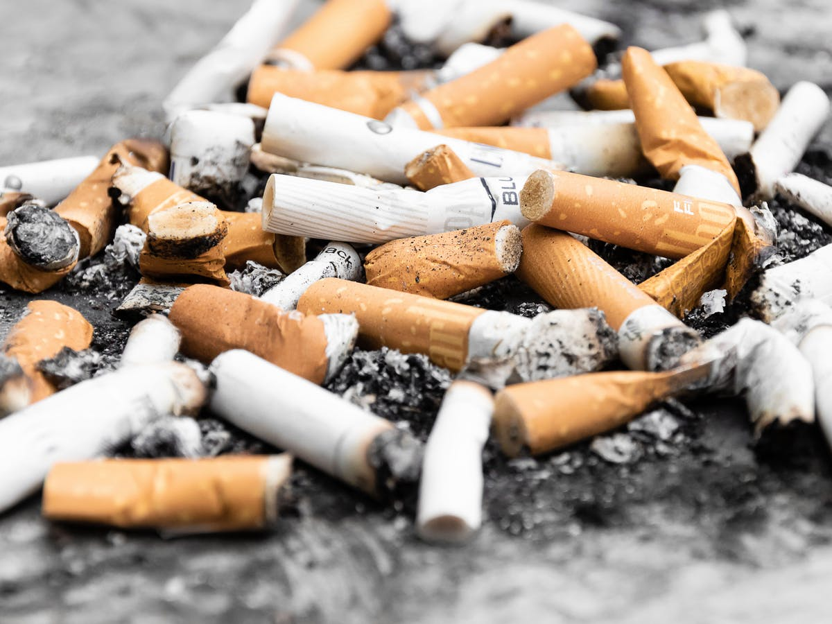 Scientists Reveal the Devastating Hidden Cost of Tossing Cigarette Butts
