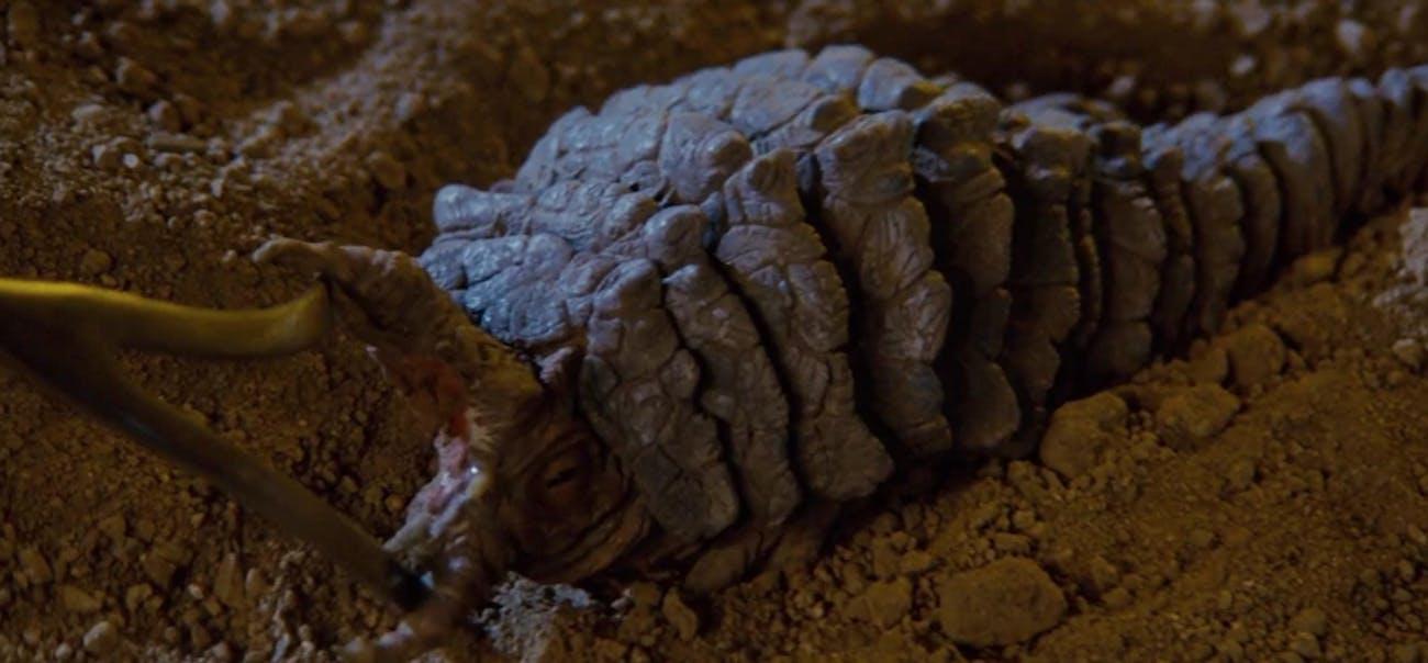 Khan's eel in 'Star Trek II: The Wrath of Khan'