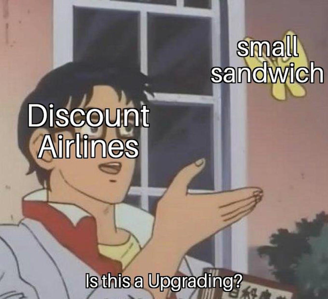 airline pigeon meme