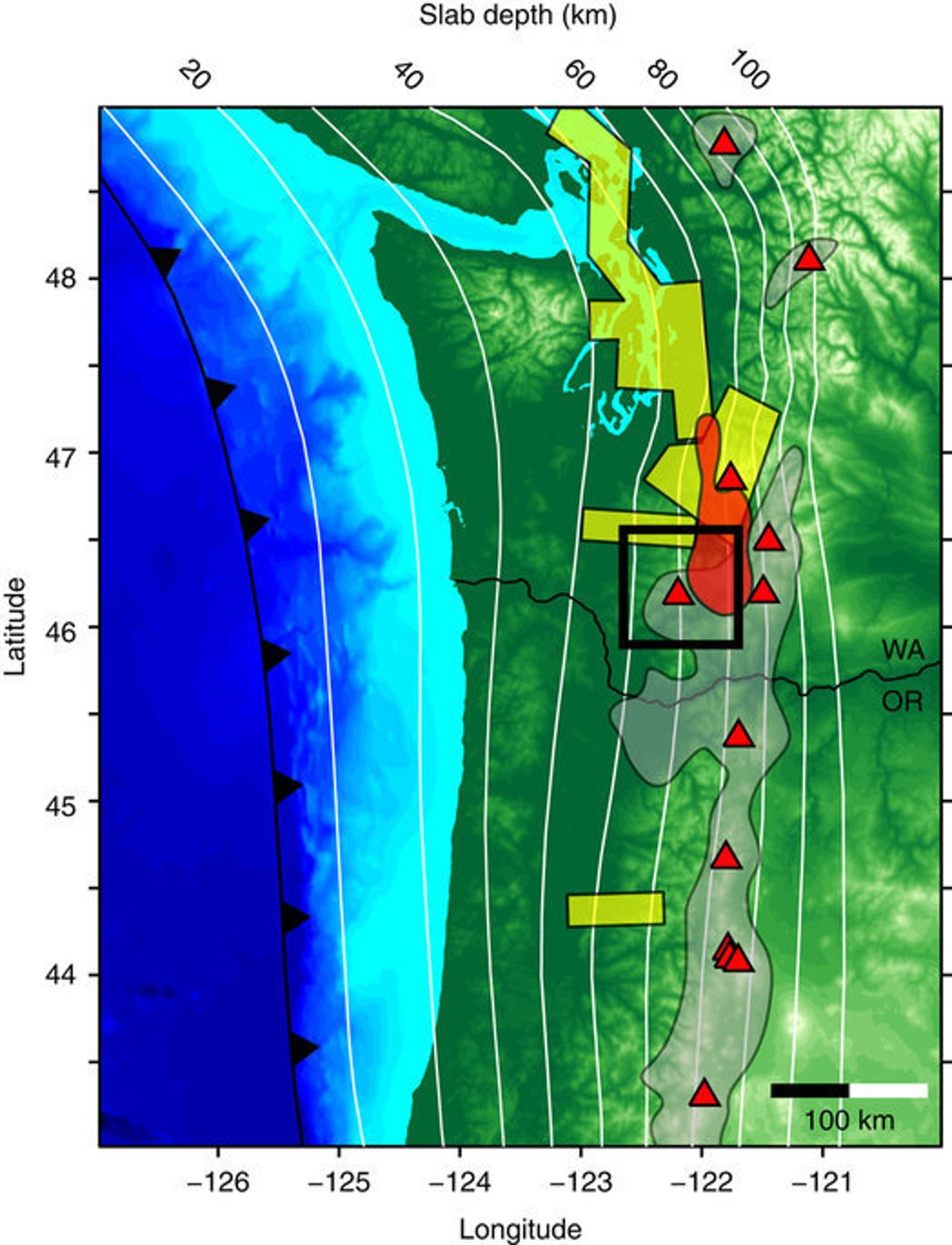 The location of the subduction trench is shown in black and the depth of the Juan de Fuca slab is contoured with white lines32. Locations of the major Quaternary volcanoes active are plotted as red triangles and the grey regions depict the distribution of volcanic vents7. Yellow boxes show where previous seismic experiments have observed a weak Moho arrival13,14,18. The red shaded region denotes the location of the Southern Washington Cascades Conductor28,29. The black box outlines the location of the Mount St Helens map shown in Fig. 2. The thin black lines show the state boundary between Washington (WA) and Oregon (OR).