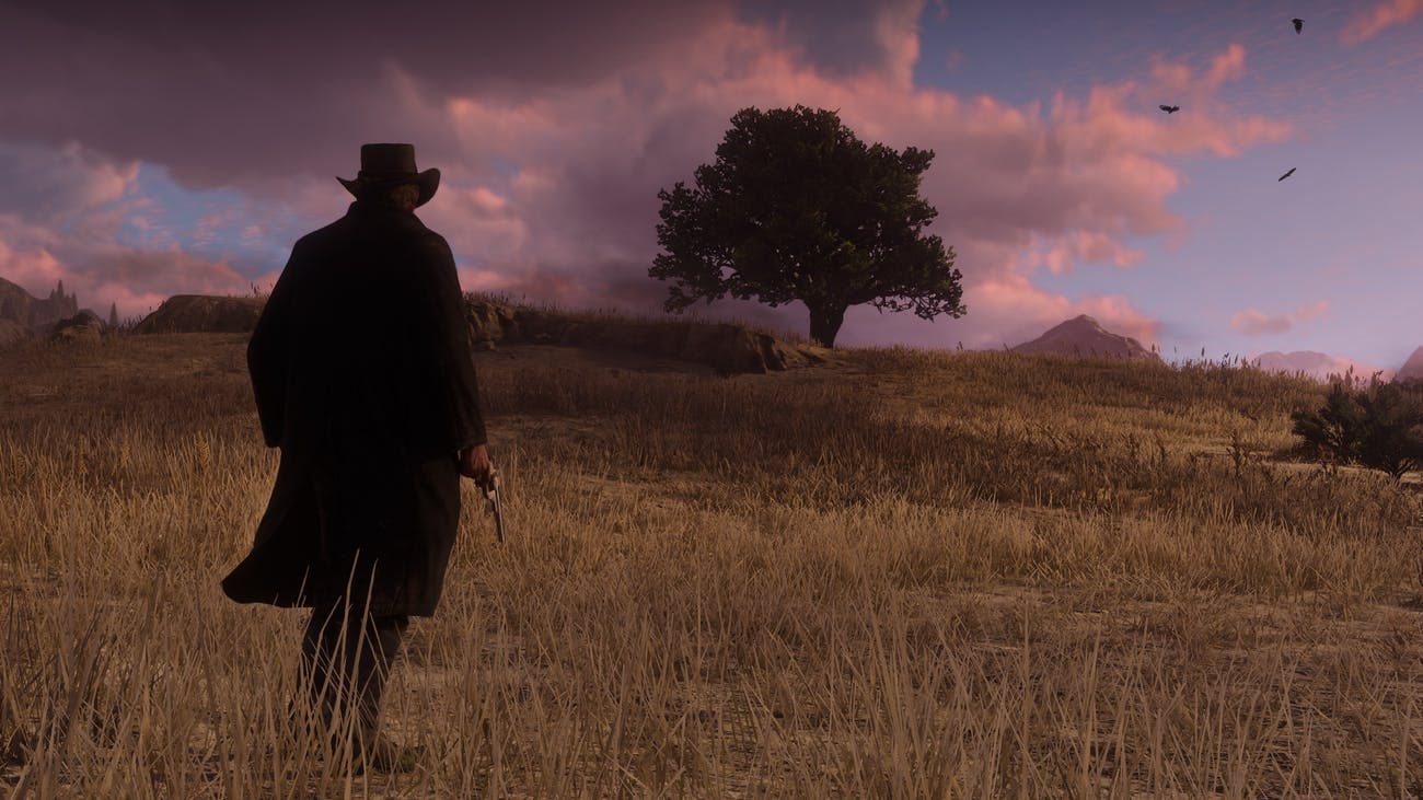 Red Dead Redemption 2 wheat field