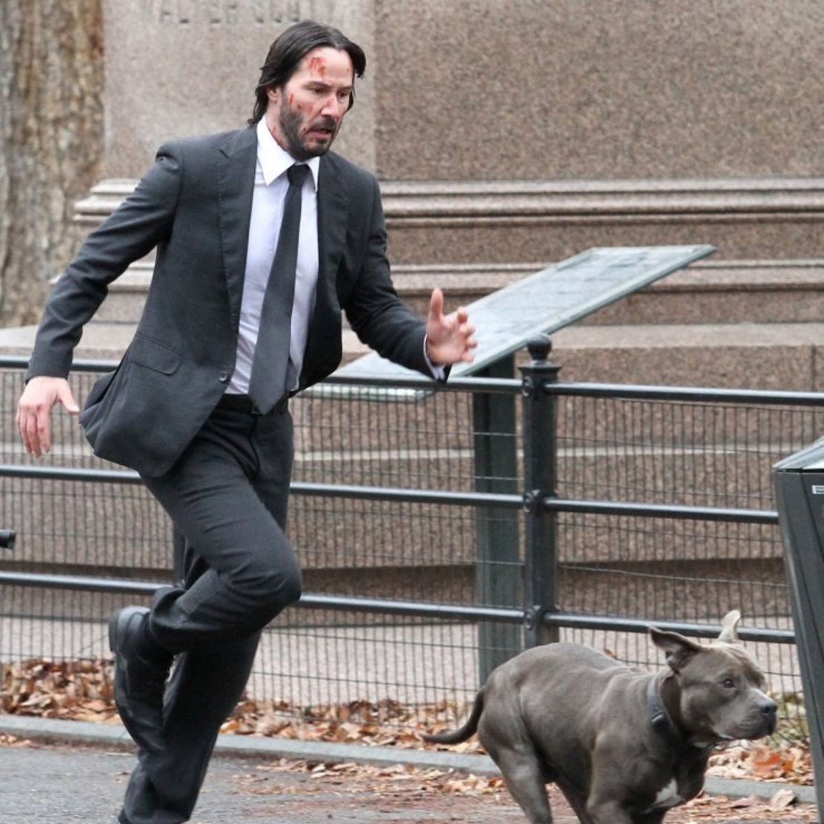 Keanu Reeves Runs With Hero Dog in These New 'John Wick 2' Set