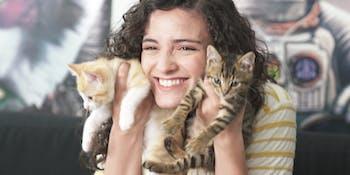 YBO Kittens