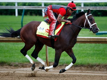 A.I. That Predicted Kentucky Derby Superfecta Reveals 2017 Bets