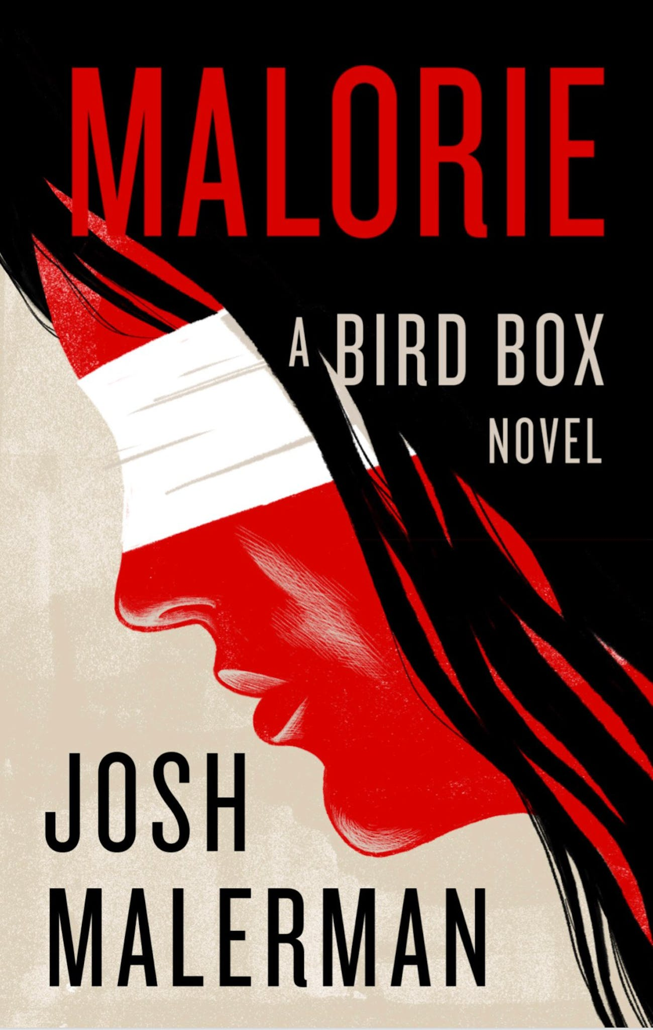 The book cover illustration for 'Malorie', shared by Malerman.