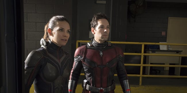 Avengers Infinity War Ant-Man