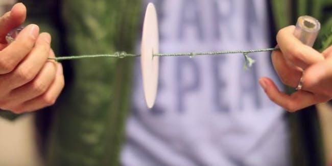 Un moustique sur un filet