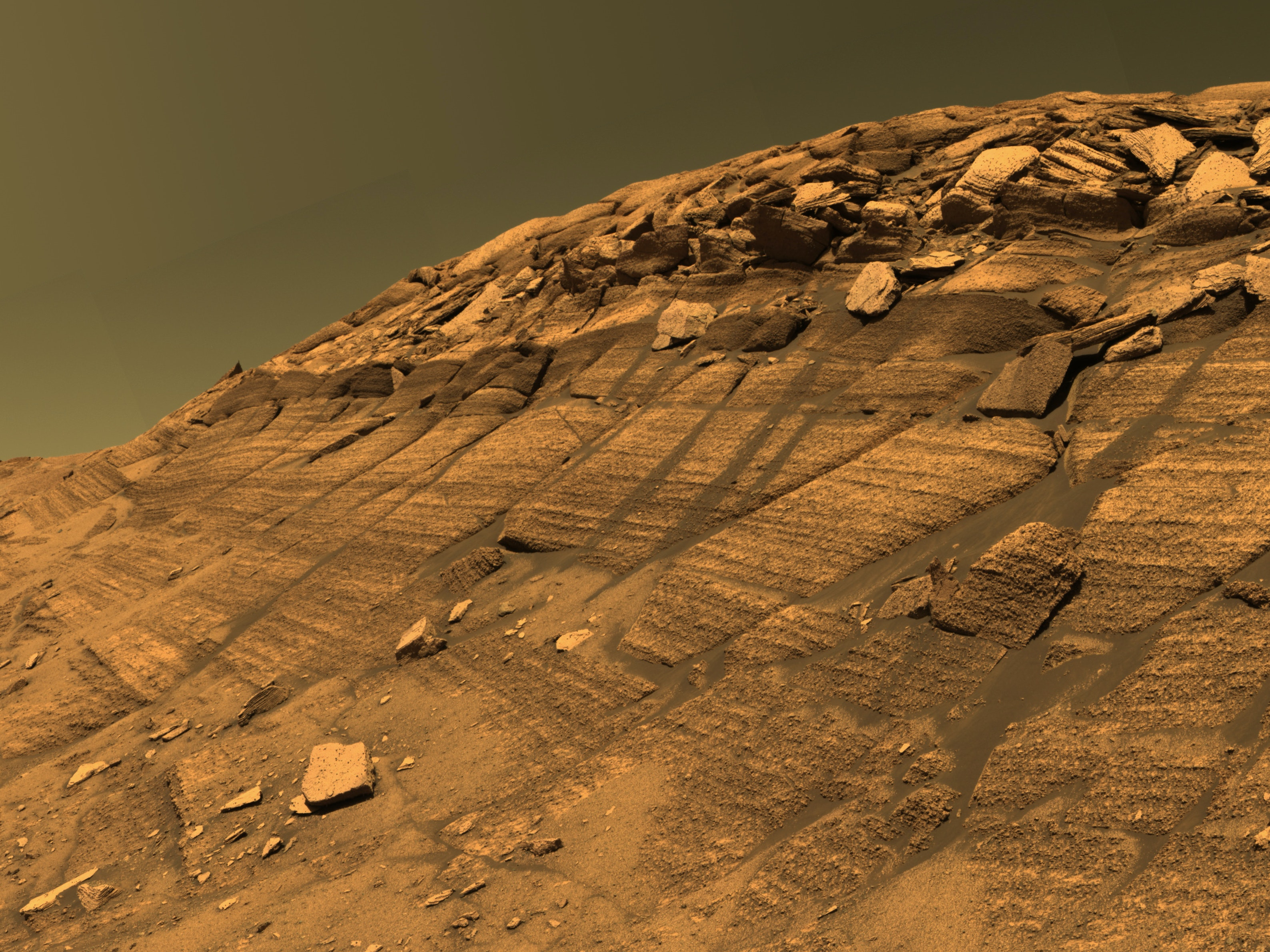 New Research Reveals Giant Tsunami Remnants on Mars