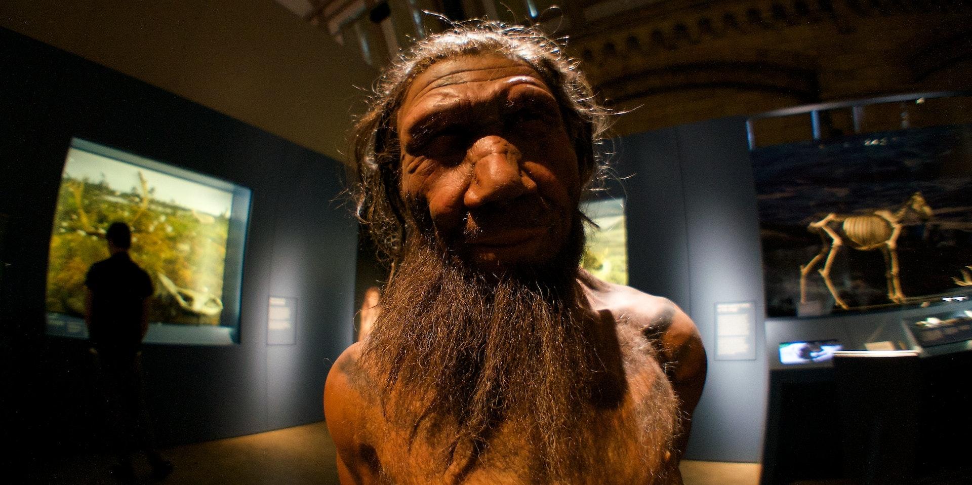 Neanderthal Bone Scars Reshape What We Assume About Their Behavior