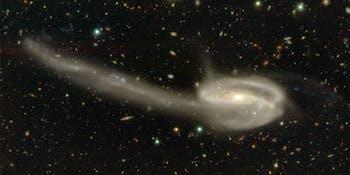 Tadpole Galaxy