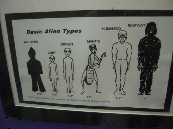 "Many, many Festivalgoers reference this guide to extraterrestrial life. ""Greys"" are the most popular by far."