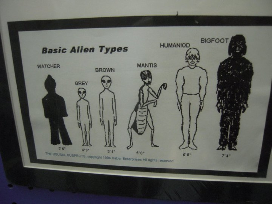 """Many, many Festivalgoers reference this guide to extraterrestrial life. """"Greys"""" are the most popular by far."""