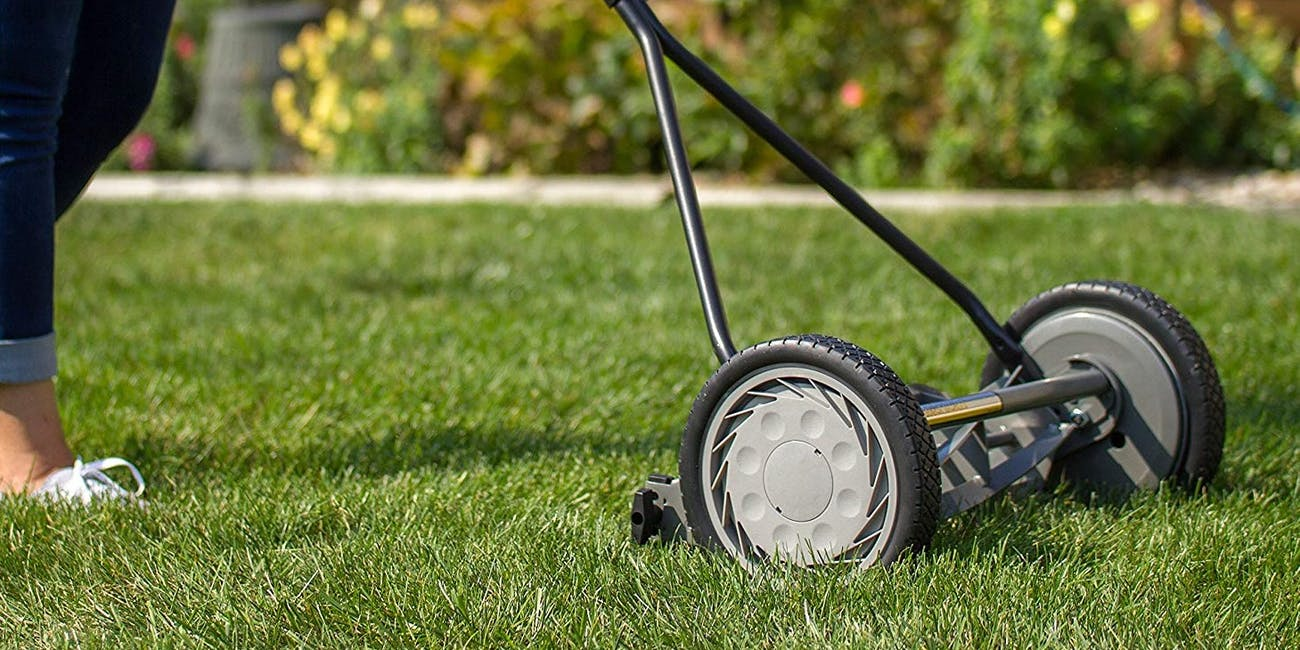 lawn mowers, lawn care, grass