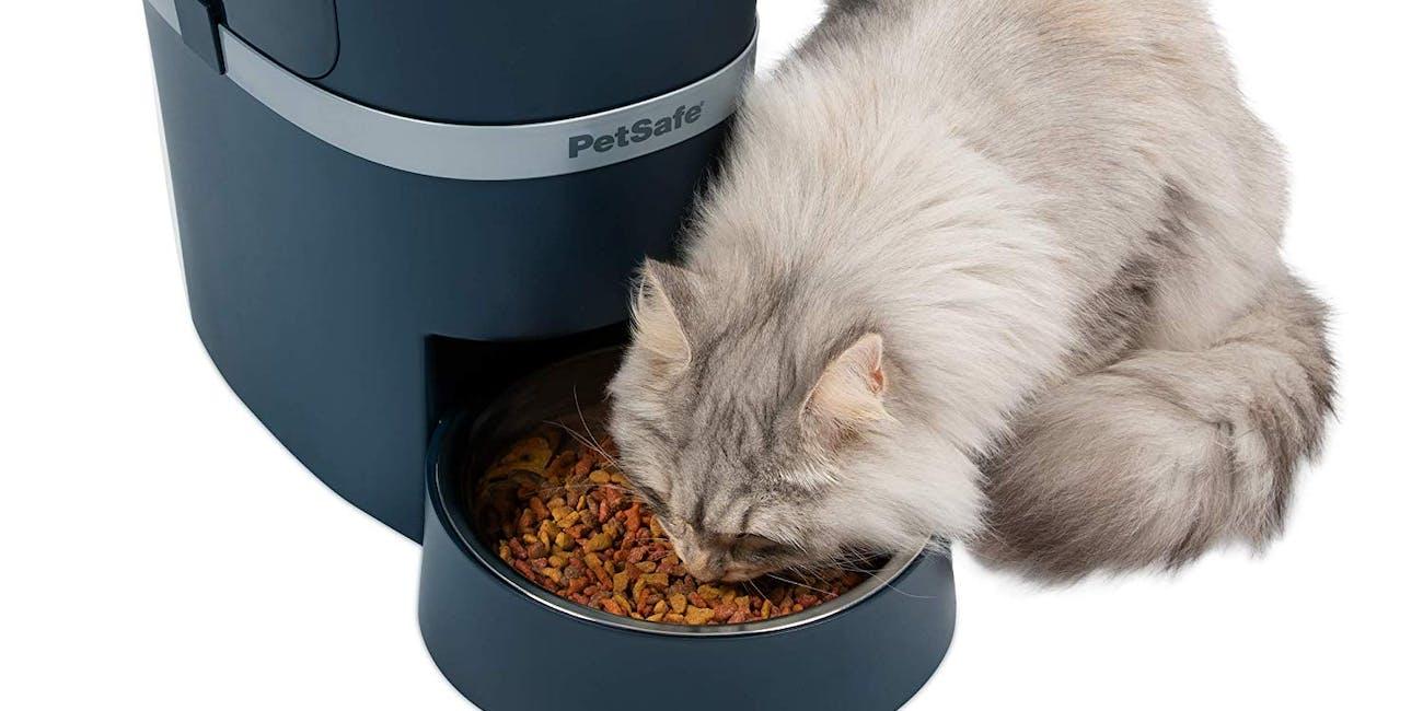 smart home pet, smart pet feeder
