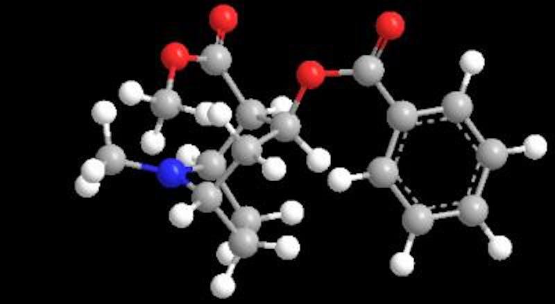 Cocaine, molecular structure