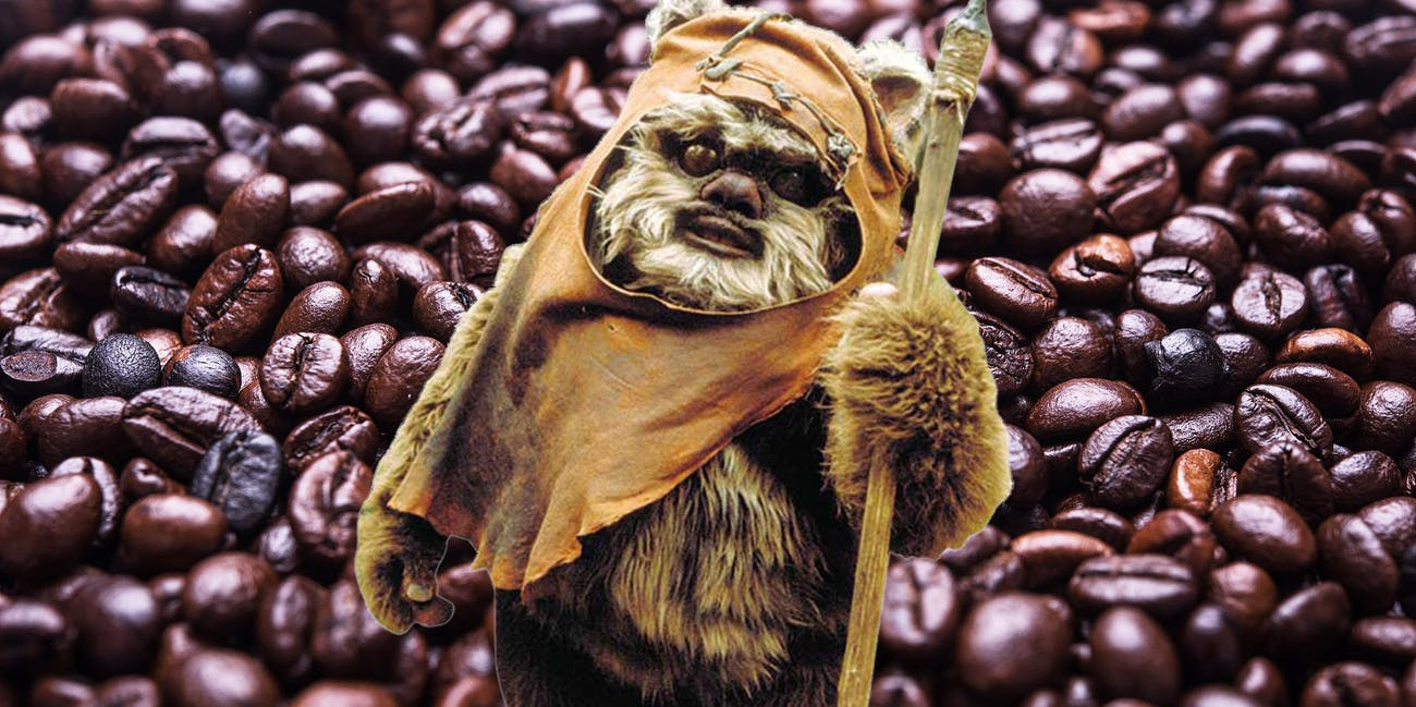 Ewoks Farm Coffee, Apartently