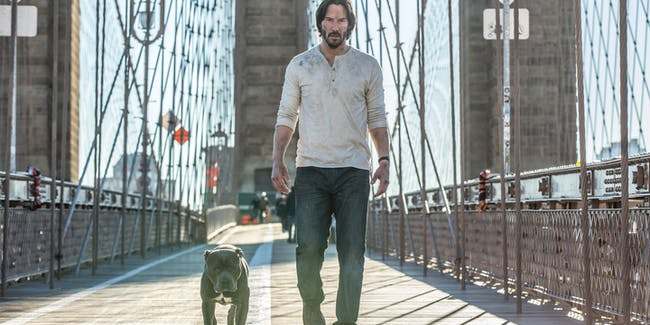 John Wick: Chapter 2 Chapter 3 Sequel cliffhanger ending what's next