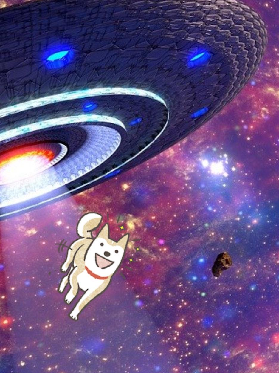 movie tropes, aliens, dogs