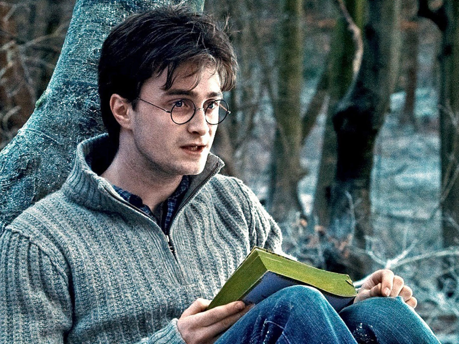 4 Harry Potter Textbooks Primed to Be Movies Next