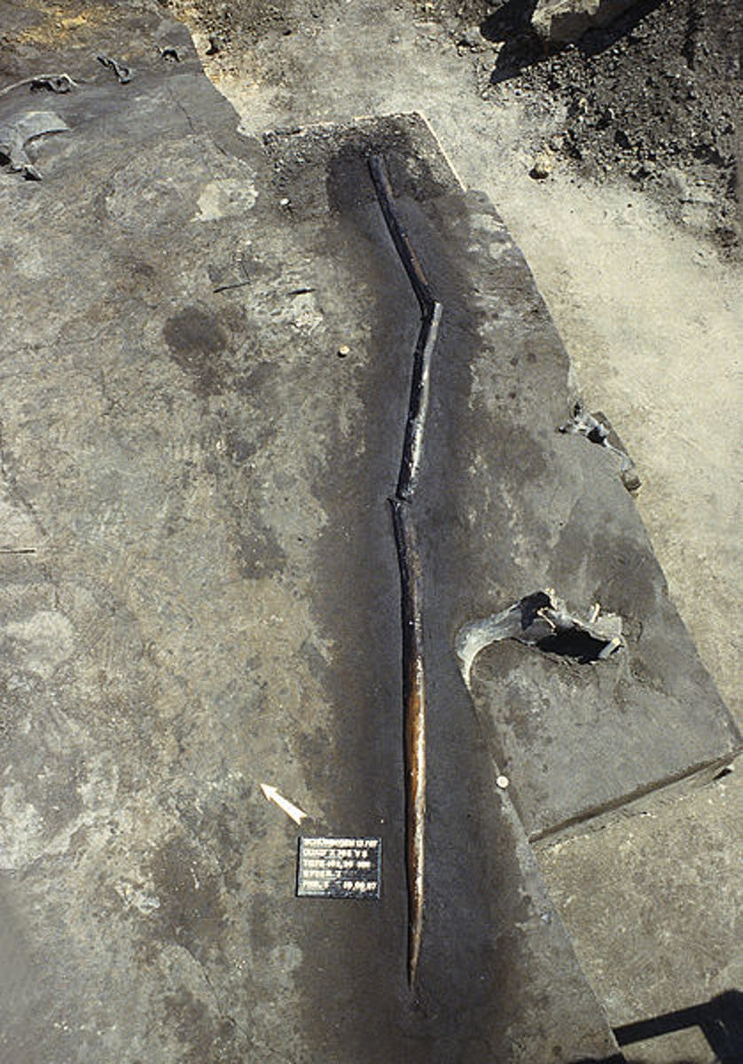 One of the Schöningen spears in its excavation site.