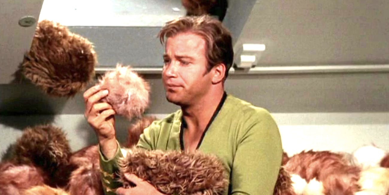 Star Trek Discovery Tribble Could Destroy The Klingons -3842