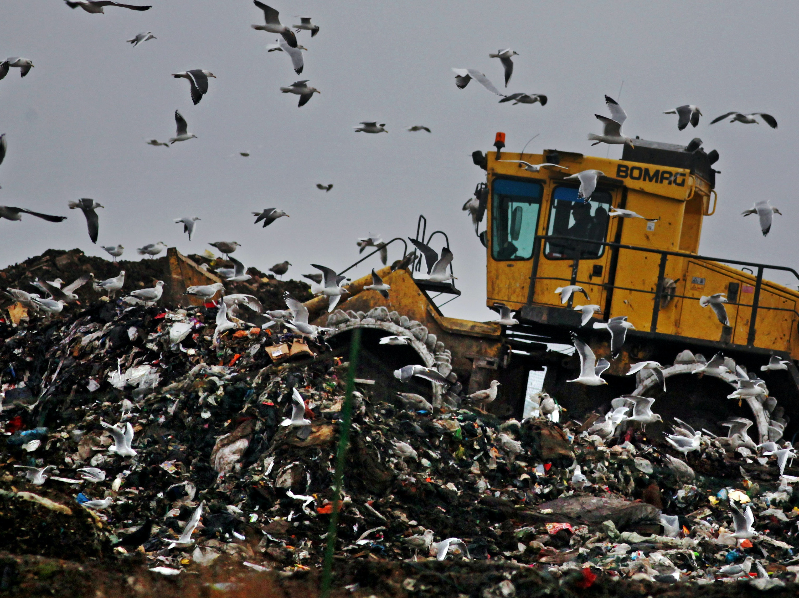 Trash Is the Energy Source of the Future
