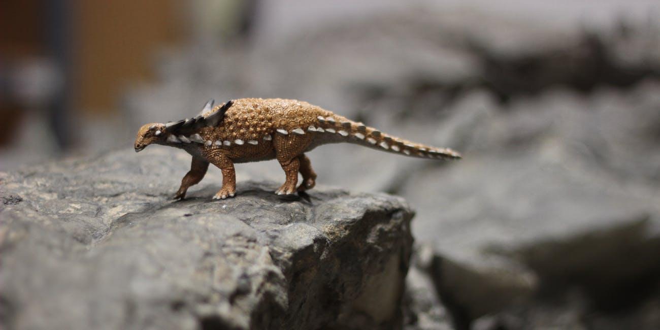 nodosaur suncor royal tyrrell museum