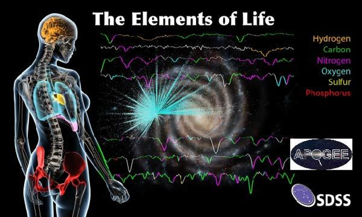 The six most common elements of life as we know it on Earth are carbon, hydrogen, nitrogen, oxygen, sulphur, and phosphorus.