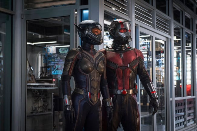 Ant-Man and the Wasp fully suited up.