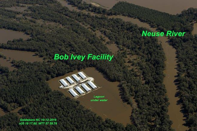 В атлантике бушуют ураганы... Waterkeeper-alliance-has-documented-flooded-sewage-lagoons-on-north-carolina-animal-farms